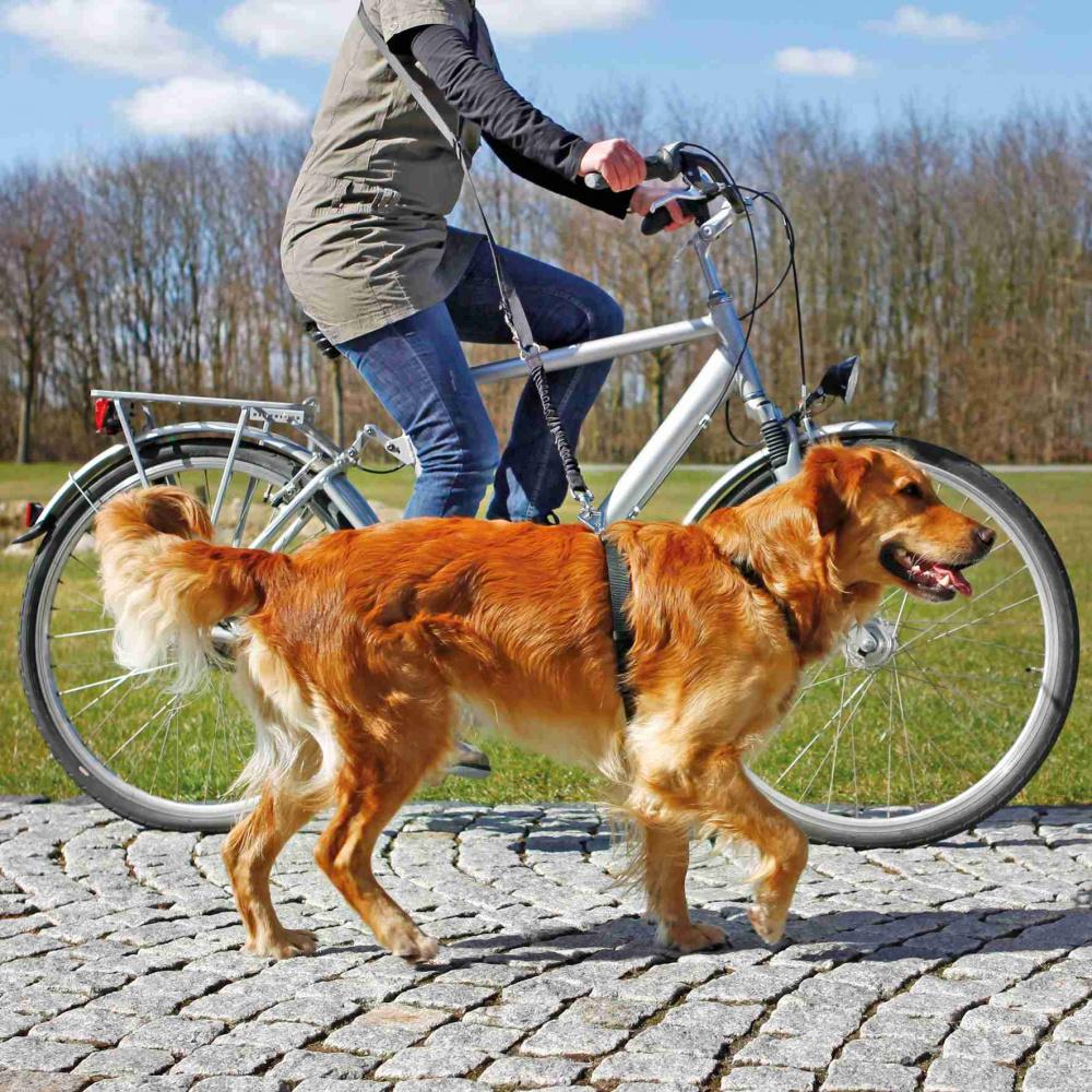 Cykel & Jogginglina Med Expander 25 mm /1-2 m