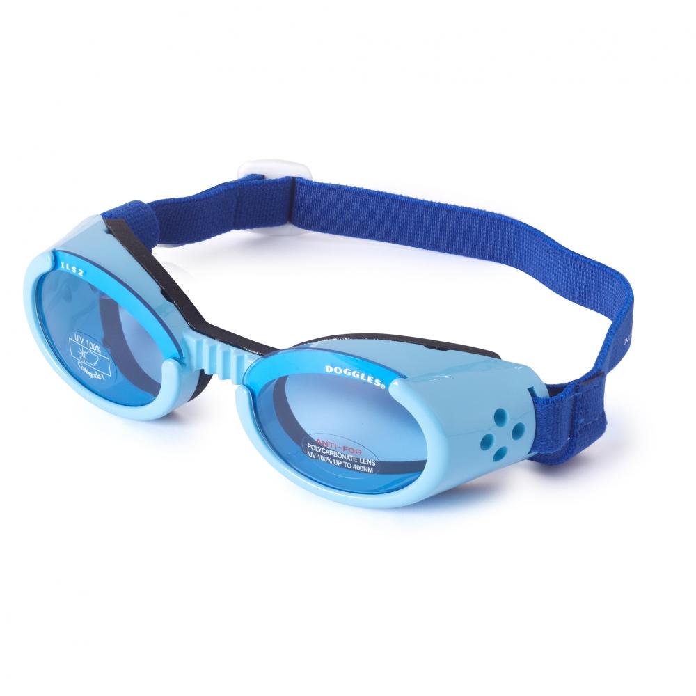 Hundglasögon ILS - Shiny Blue / Blue Lens