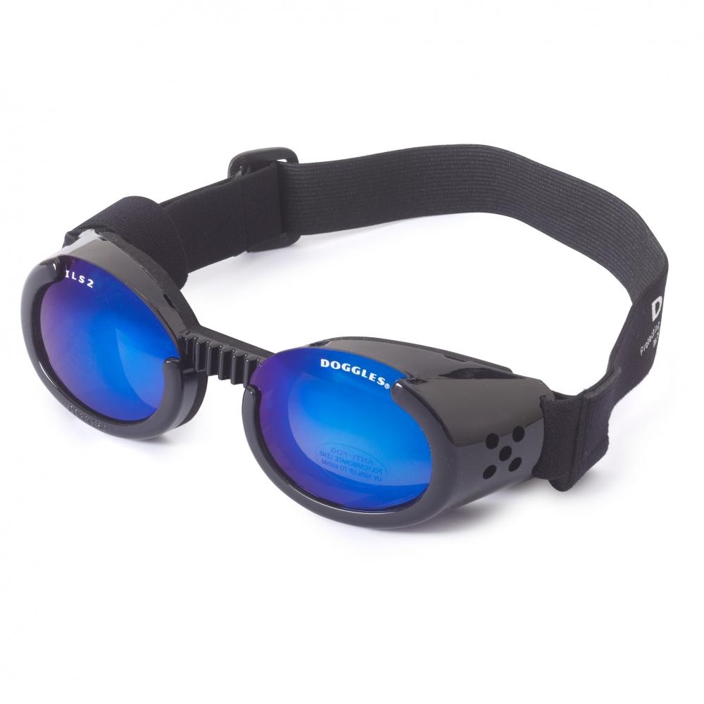 Hundglasögon ILS - Shiny Black / Blue Lens
