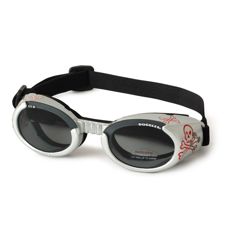Hundglasögon ILS - Silver Skull / Smoke Lens