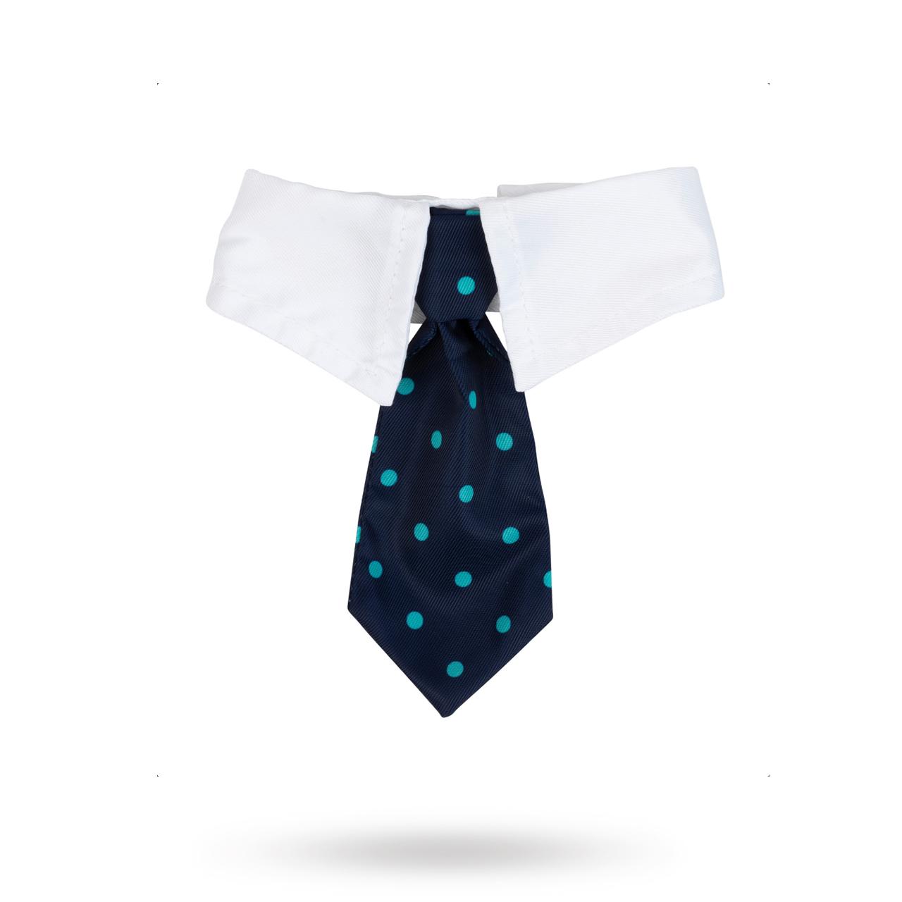 Mr. Carrington Necktie