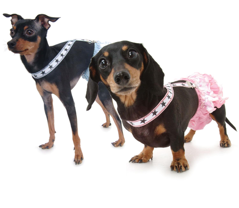 425482c0b Hundbutik för Hundkläder, hundhalsband och hundselar   Doggie.se