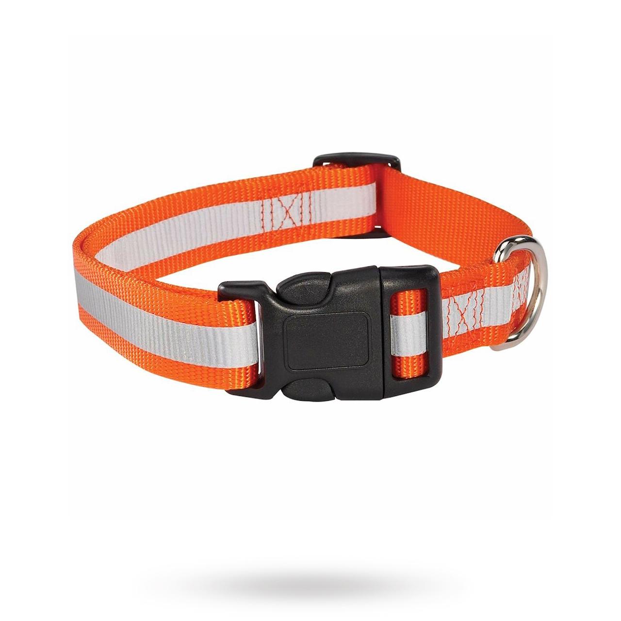 GG Reflexhalsband Orange