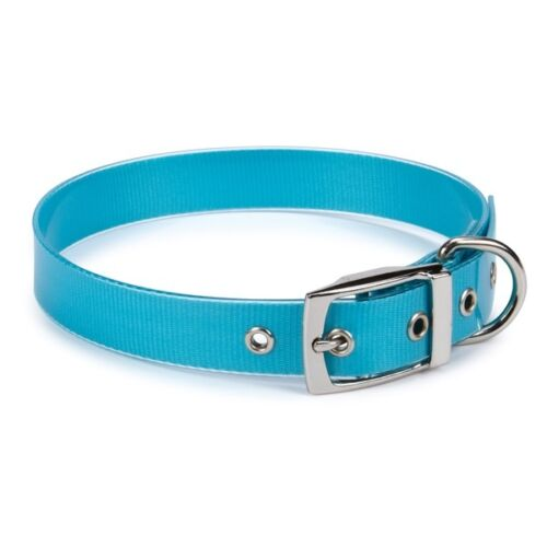 Waterproof Halsband - Blue Bird