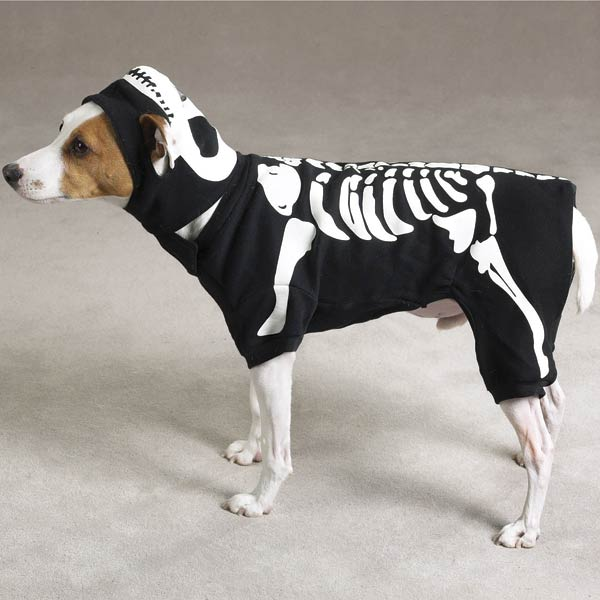 Självlysande Skelettkostym - Hundkläder